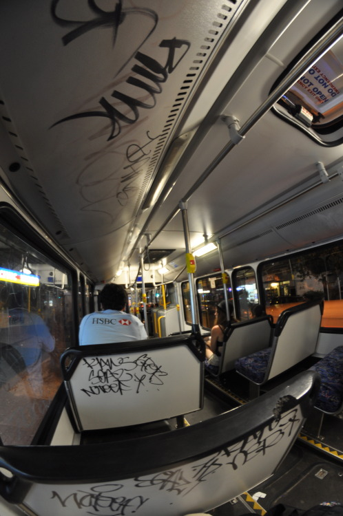 harshviking:  Sydney Busses