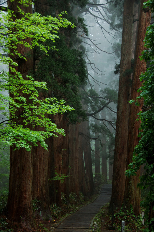 unwrittennature:  DSC_7910 (by Ah Bee Panda)