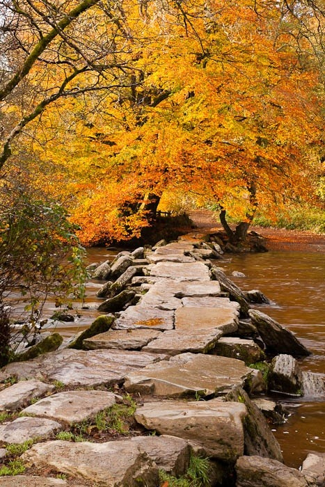 Stepping Stones, Exmoor, England photo via maggie