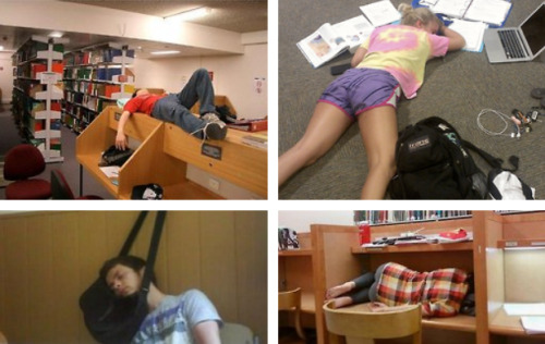 This is How You Know Finals Week Has Arrived They're just studying for their dream class.