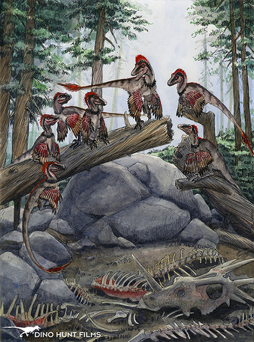 Feathered dinosaurs are cool. paleoillustration:   Dromaeosaurus nest, from the Dino Hunt team!
