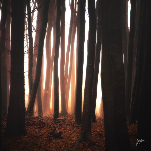 sasajewun:  -Leaving the jail at dawn- by *Janek-Sedlar