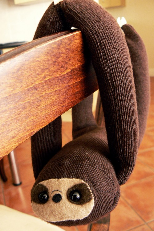 A tutorial on how to make a sloth out of a sock!