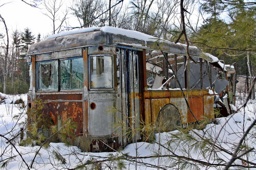 my7horcruxes:  Old Bus (by robtm2010)