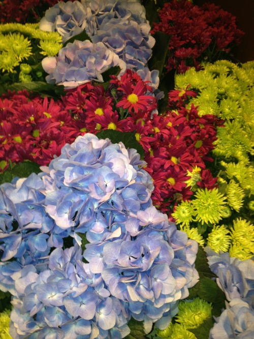 Flowers at Wynn Las Vegas. Summer is coming!