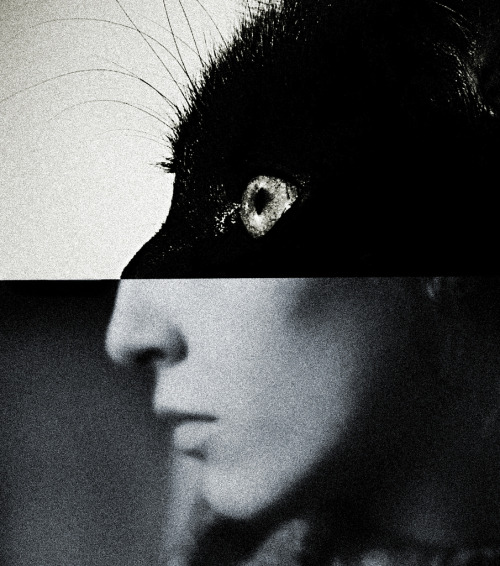 Untitled by Brett Walker