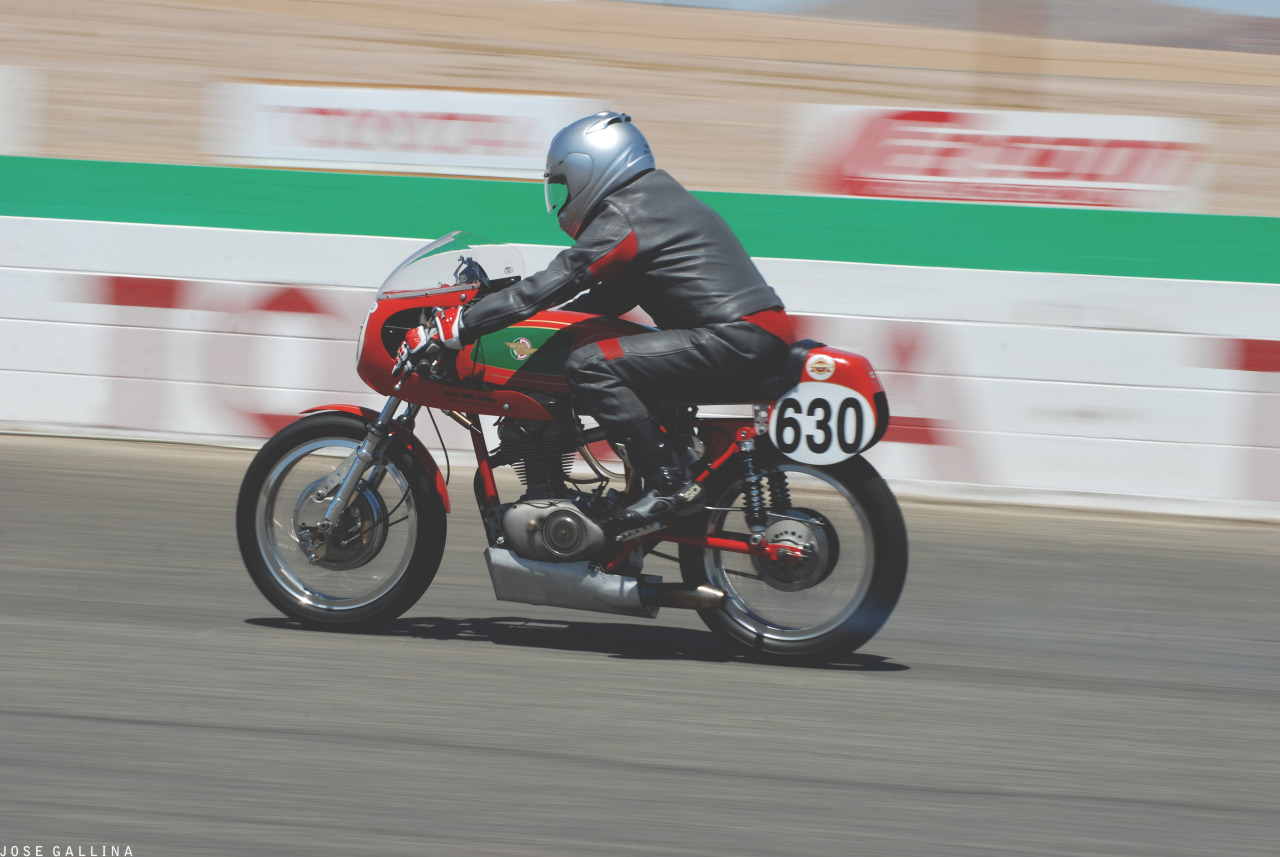 Willow Springs// Corsa Motorclassica