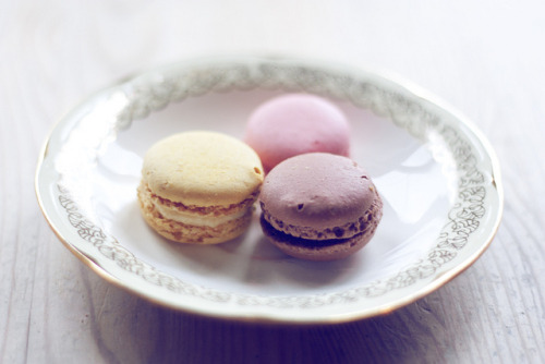 serendipity-precious:  macarons by Åshild Eriksen on Flickr.