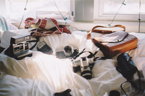 oursoulsareone:  untitled by nicole tierney. on Flickr.