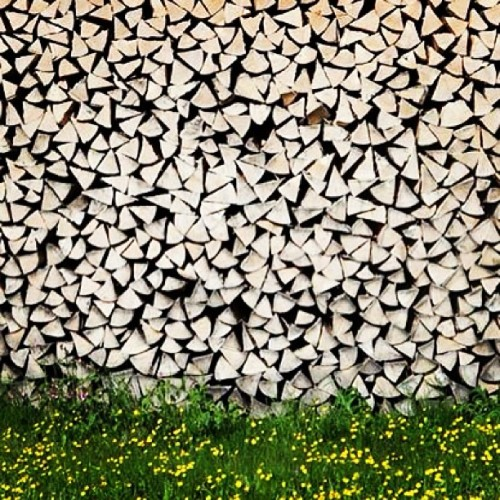 Stacked wood and wild flowers (at Garmisch-Partenkirchen)