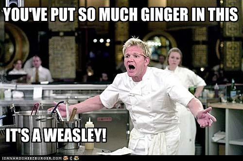 kelclarkex:  Hahaha, you go Gordon Ramsay!