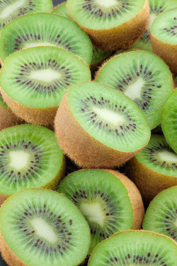 feelhappiness:  kiwis are fetch