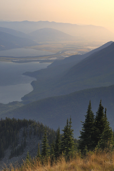 4nimalparty:  Kootenay Lake (by Tim Ennis)