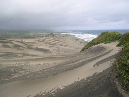 Sigatoka sand dunes by John Steedman on Flickr.