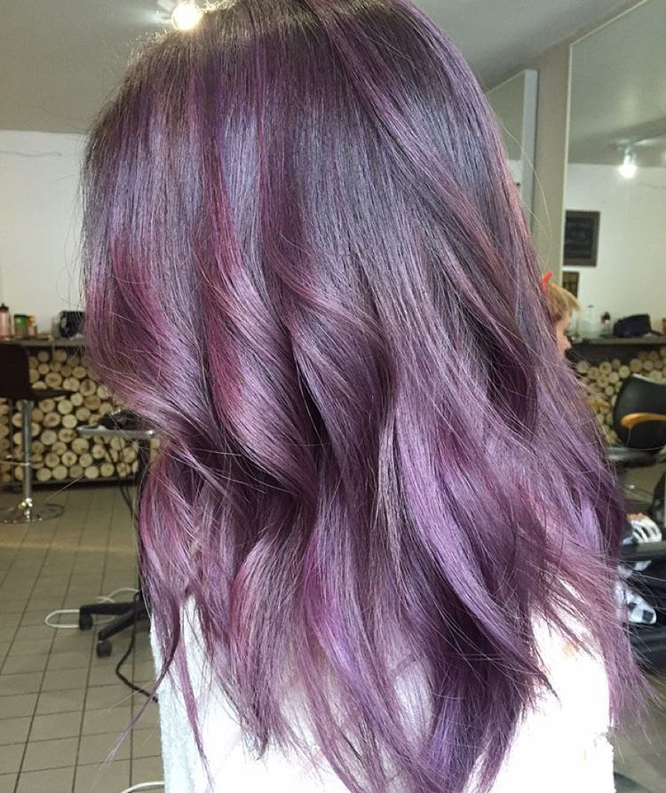 ombres blondes and balayage � purple haze purple