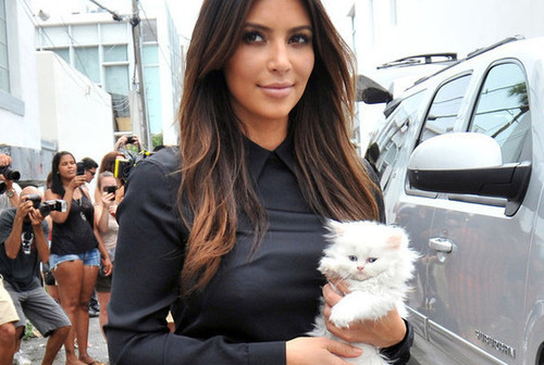 RIP Mercy. The cat that Kanye West bought Kim Kardashian has passed away. Click for more.