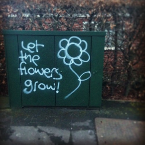 #StreetArt #Leeds #Cookridge #LS16 #IGersLeeds IGersUK #Flowers #Graffiti #Art #PublicSpaces #Instagram (at Cookridge)