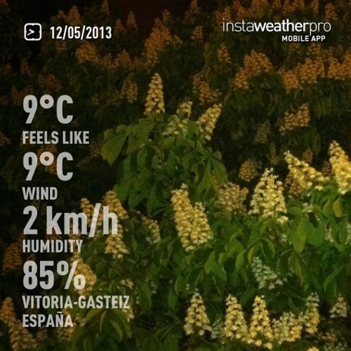 Noche bajo el castaño florido. #weather #instaweather #instaweatherpro  #sky #outdoors #nature  #instagood #photooftheday #instamood #picoftheday #instadaily #photo #instacool #instapic #picture #pic @instaweatherpro #place #earth #world #vitoriagasteiz #españa #night #spring #skypainters #cold #es