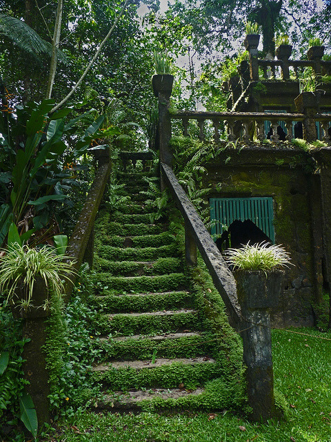 visitheworld:  Mossy stairways in Paronella Park, Queensland, Australia (by wollmatt).