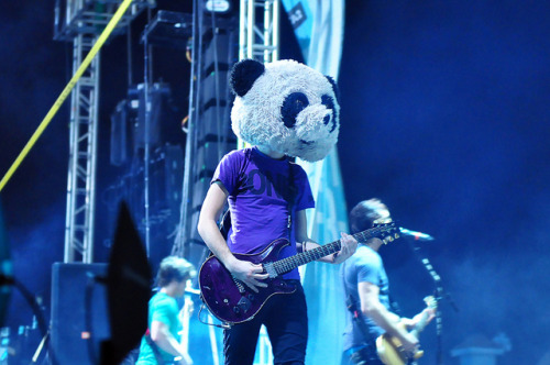 ineedtofindmywaybacktothestart:  All Time Low - Jack Barakat the Panda [EXPLORED] by Melissa Terry on Flickr.