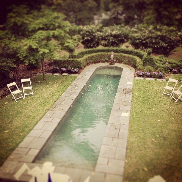 Wedding rehearsal in one of the most beautiful backyards I've ever seen