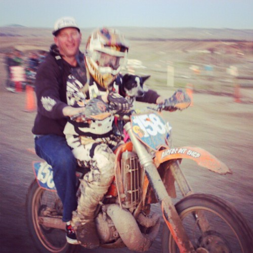 taytay199:  I like this picture, I just wish it wasn't so blurry! #racing #ktm #dirtbike #fmf #aftertherace #mydadsbetterthanyours #daddy #puppy #queenslandheeler  #lovethem