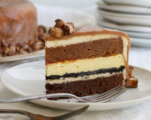 gastrogirl:  white chocolate cheesecake with chocolate milky way cake.