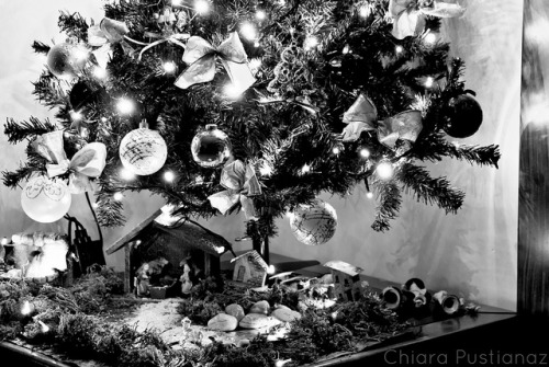 9/52 :: Jingle bell, jingle bell, jingle bell rock… on Flickr e guarda il post sul blog.