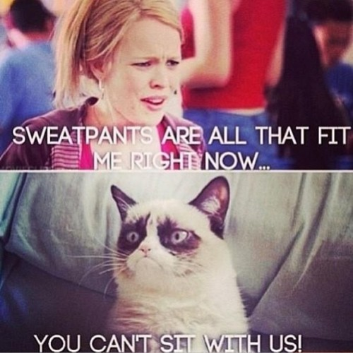 lovemycrazy:  You can't sit with us. #meangirls #grumpycat
