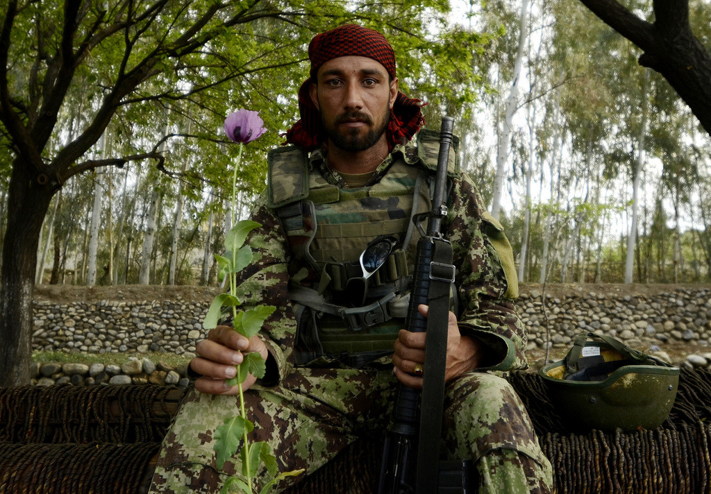 An Afghan National Army soldier poses with a poppy near the village of Karizonah, Afghanistan. @ (U.S. Air Force photo/Staff Sgt. Joshua L. DeMotts)