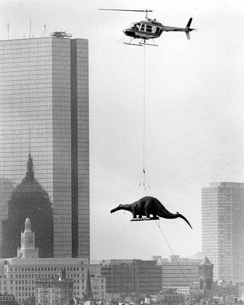 Dinosaur being transported to the Boston Museum of Science by a helicopter, 1984.