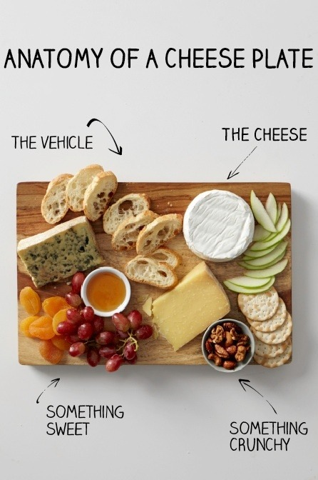 conwayamling:  Perfect cheese plate anatomy   pretty much!