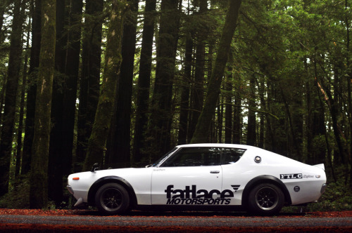Fatlace Skyline Shoot (by JonChowPro)
