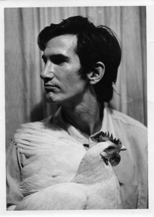ALL TOWNES VAN ZANDT EVERYTHING.