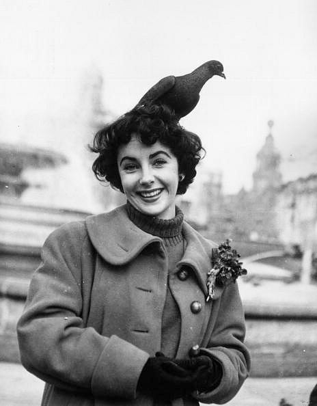Elizabeth Taylor feeding the pigeons in Trafalgar Square, London, November 1948.
