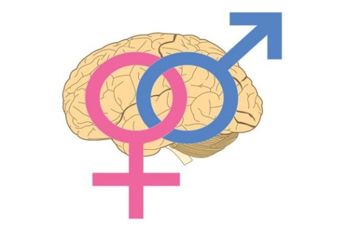 (via Science Confirms The Obvious: Men And Women Aren't That Different | Popular Science)