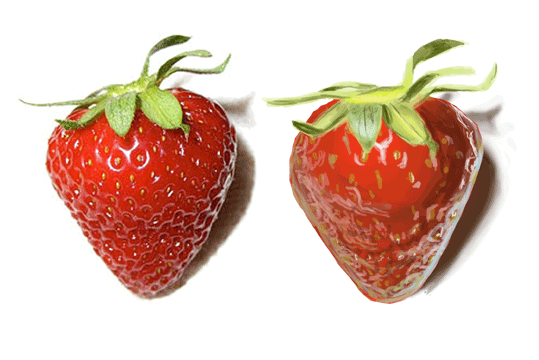Digital painting study with a strawberry.  Photograph by Rlaferla and found here.