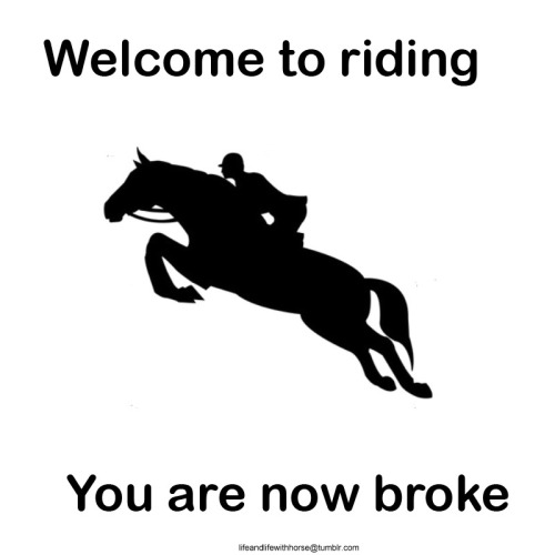 We can see the humor in this, and we horse people wouldn't trad it for the world.