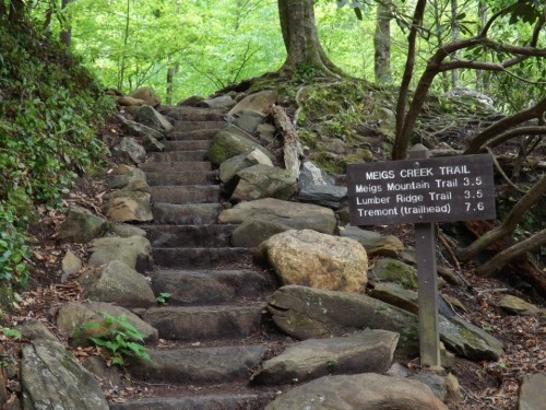 Great Smoky Mountains National Park, Tennessee—  This beautiful set of stairs leads to the Meigs Creek trail head, which branches off into 3 separate paths. One such trail, the Meigs Mountain Trail, eventually leads you to Upper Meigs Falls. We didn't walk on any of the trails that day, but we plan to soon!