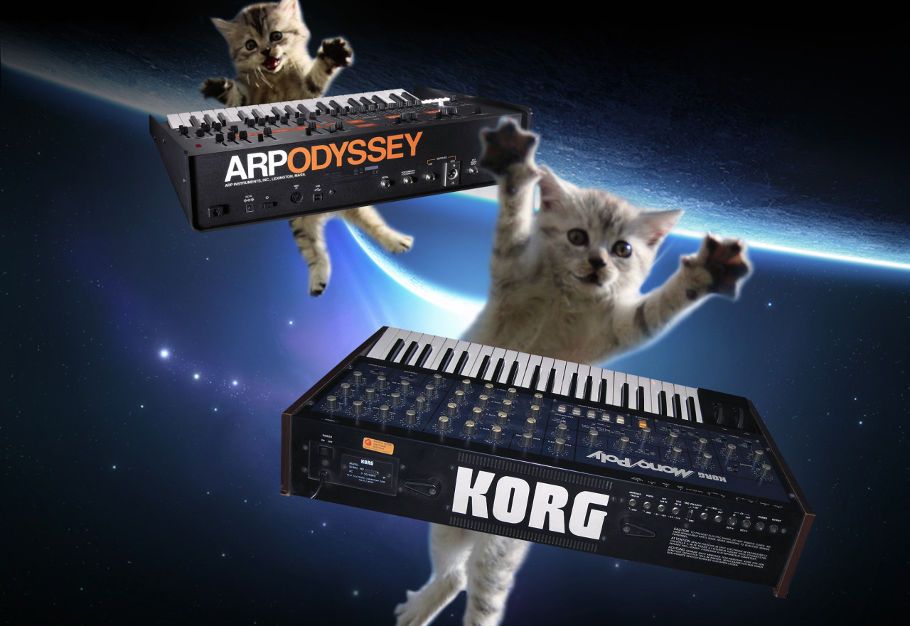 #cats on synthesizers in space #catsonsynthesizersinspace#cosis#cat#cats#synth#synths#synthesizer#synthesizers#space#cosmos#scifi#nasa#spacex#catstronaut#kitten#kittens#caturday#cute#epic#funny#lol#lolz#arp#catsofinstagram #cts of tumblr