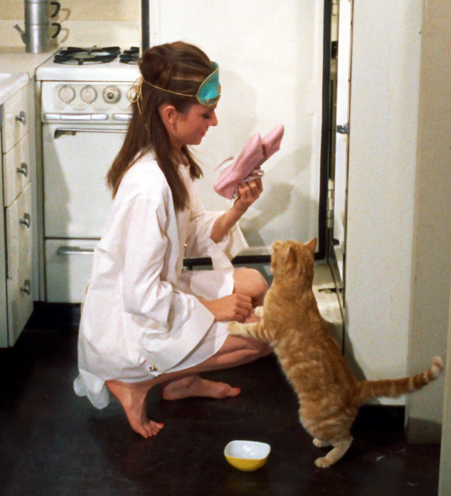dangerousmiless:  Breakfast At Tiffany's