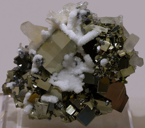 eocene:  Pyrite on Calcite Specimen by cobalt123 on Flickr.