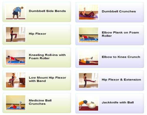 ladyknucklesinshape:  motiveweight:  Over 60 core exercise demonstrations (all animated) - Spark People  finally!