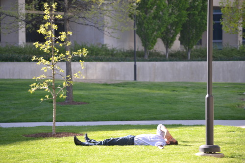 this dude has the right idea just give up and lie down in the sunny grass in your nice clothes