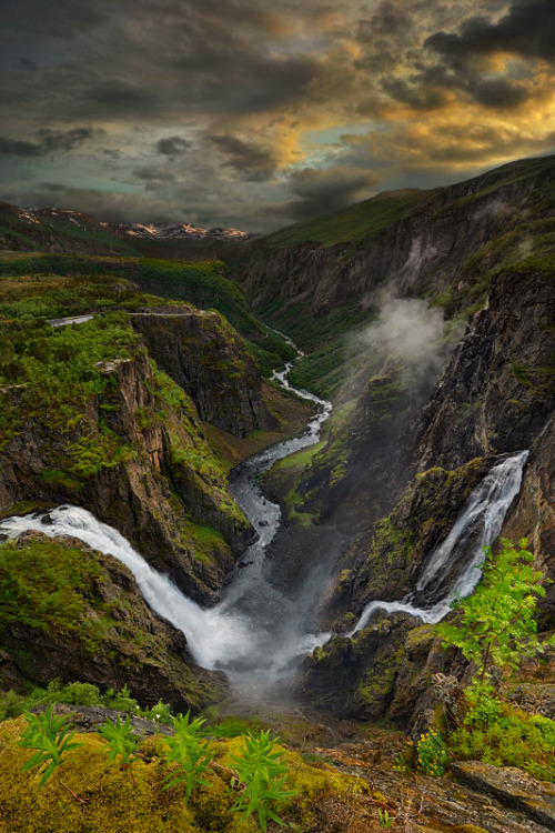 woodendreams:  (by Pawel Kucharski)