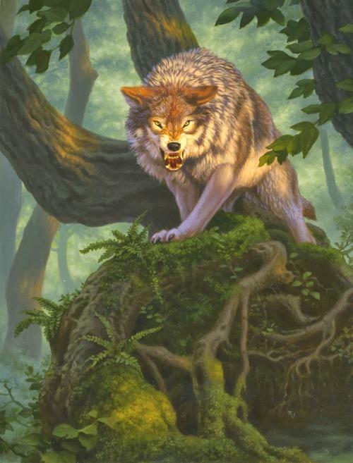 theartofmtg:  Wolf Token || Raoul Vitale