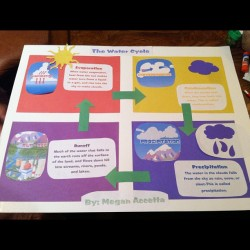 The Water Cycle: By Megan Accetta… I better an A. #evaporationcondesnationprecipitation #ithoughtiwasdonewiththese#goodfuturemompractice