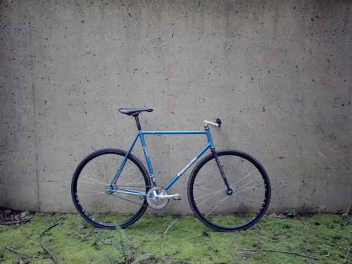 trackbicycles:  Panasonic