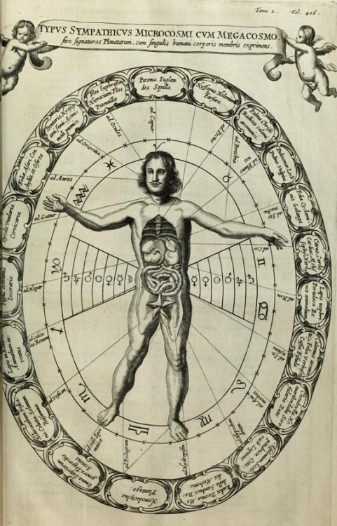Athanasius Kircher: Diagram showing the sympathies between the macro and microcosm, featured in Mundus Subterraneus. Fuente