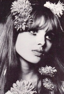 madeinthesixties:  Madeline smith